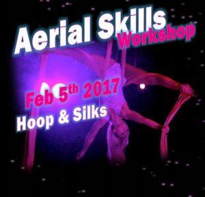 Aerial Skills Workshop at SK Dance Studio - Learn Hoop and Silks